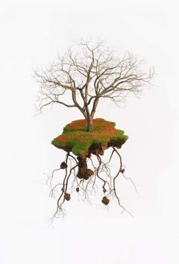 Jorge-Mayet-sculptures-7