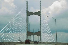 Got into the car & started driving toward Little Talbot Island & then onwards to Amelia Island.