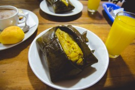 This tamale had chicken, vegetables, rice, & was made out of maize. It's steamed in banana leaf, keeping the tamale so moist. It was the best tamale of my life.