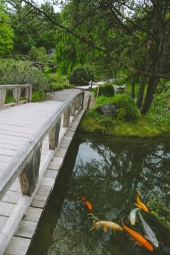 Issa Bridge