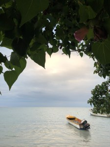 Top Places to Explore in Negril, Jamaica | Tiffer Time