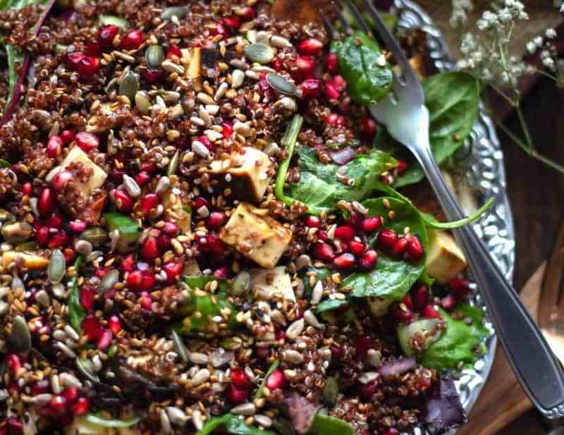 Paneer Quinoa Salad with Pomegranate and Toasted Seeds in plate with fork
