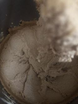 Mixed batter in stand mixer