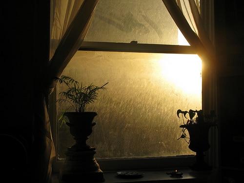 Window, by Ingrid Spangler