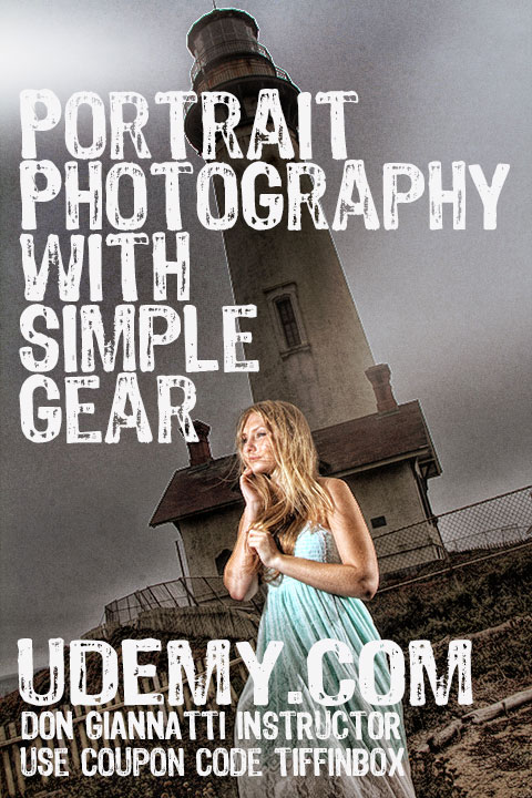 Portrait Photography With Simple Gear - Tiffinbox Coupon Code