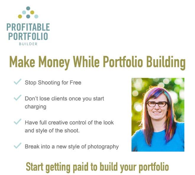 Profitable Portfolio Builder