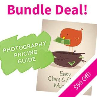 Photography Pricing Guide + Easy Client + Money Manager Bundle by The Modern Tog