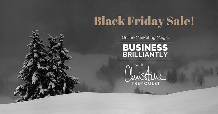 Business Brilliantly by Christine Tremoulet