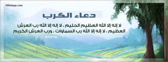 facebook-c0028