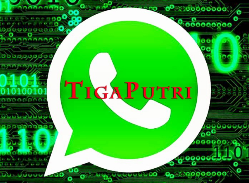 Center WhatsApp TigaPutri Software Pulsa