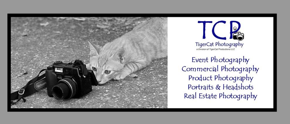 TigerCat Photography
