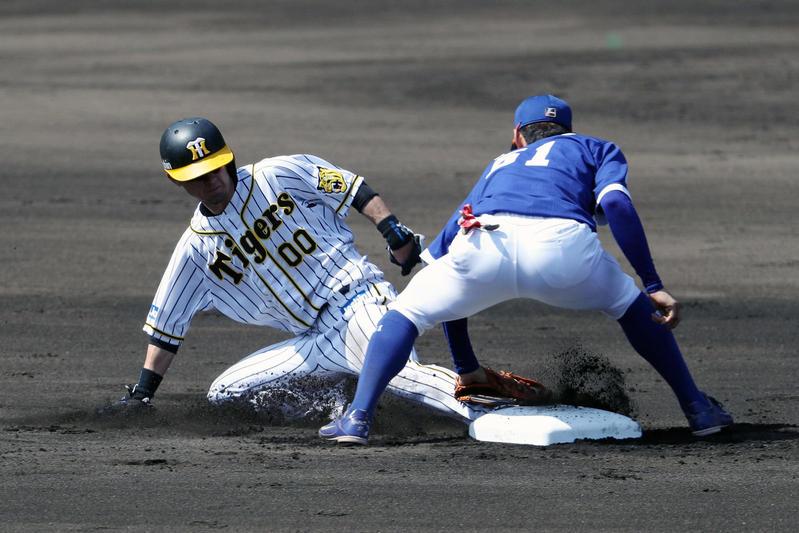 【悲報】阪神上本、今季残り全休でもFA権取得へ