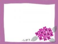 フリー素材:ガーリーな紫陽花(あじさい)のイラスト(640pix)