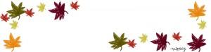 フリー素材:ヘッダー画像:800pixサイズ;秋のもみじ(紅葉)のwebデザイン素材