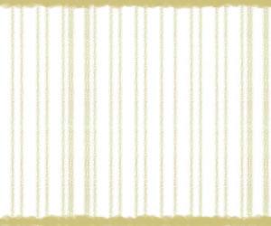 フリー素材:バナー広告:300×250pix;大人かわいい芥子(からし)色のしましまのテクスチャの背景のwebデザイン素材