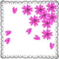 大人可愛いピンクの桜とガーリーなレースの飾り枠のバナー広告、アイコンのwebデザイン素材(フリー素材200 × 200pix)