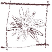 ネットショップ、バナー広告のwebデザイン素材:大人可愛い茶色の花と飾り枠。アイコン(twitter,mixi)のフリー素材(200×200pix)