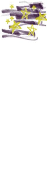 バナー広告のwebデザイン素材:夜空に星いっぱいのイラスト。夏の季節のネットショップのフリー素材(160×600pix)