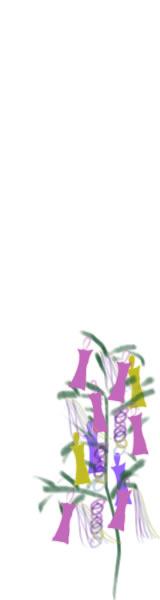 七夕のバナー広告のwebデザイン素材:七夕の笹飾りのイラスト。夏の季節のネットショップのフリー素材(160×600pix)