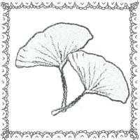 フリー素材:アイコン(twitter,mixi,ブログ);モノトーンの木の葉(イチョウ)とレース;200×200pix