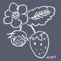 アイコン(twitter)のフリー素材:黒板に描いたような北欧風デザインのイチゴとイチゴの花のイラスト;200×200pix