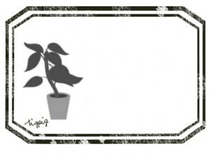 大人可愛いHP制作に使えるモノトーンの観葉植物とラベル風のフレームのフリー素材