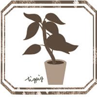twitter,Line,アイコンに使えるセピアブラウンの北欧風の観葉植物とラベル風のフレームのフリー素材