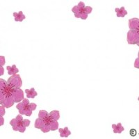 大人可愛い桃の花のイラストのフレーム:640×480pix