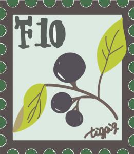 シンプルな木の実と葉っぱと枝の切手風イラスト:400×460pix