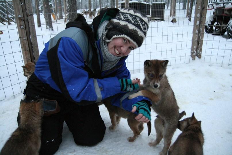 rovaniemi winter Lapland holidays - husky farm
