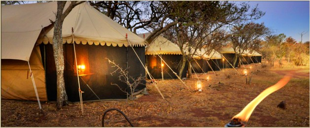 Hayward's Safari Luxury Tents