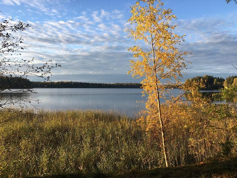 Lake Pühajärv hiking trail