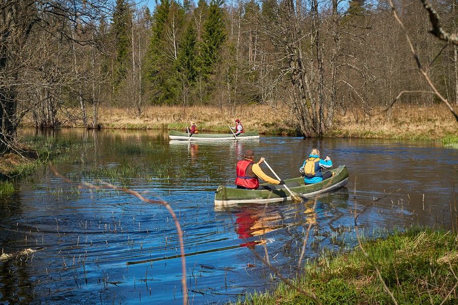 Canoe Tour in Kõrvemaa National Park