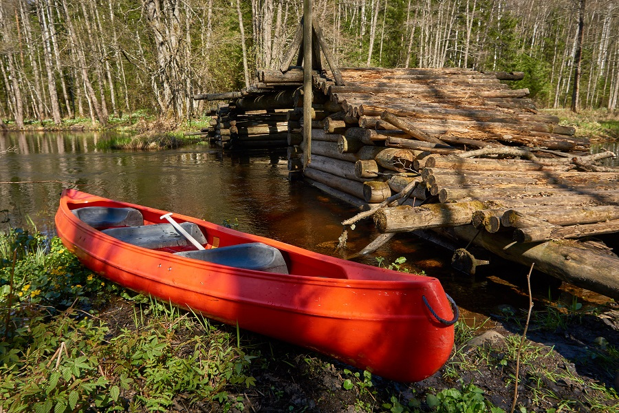 Soodla river Canoe Tour in Kõrvemaa National Park
