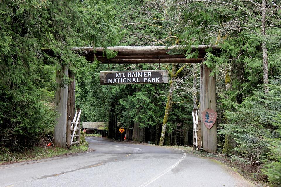 Best hikes in Mount Rainier National Park4