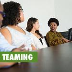 self-analysis and teaming