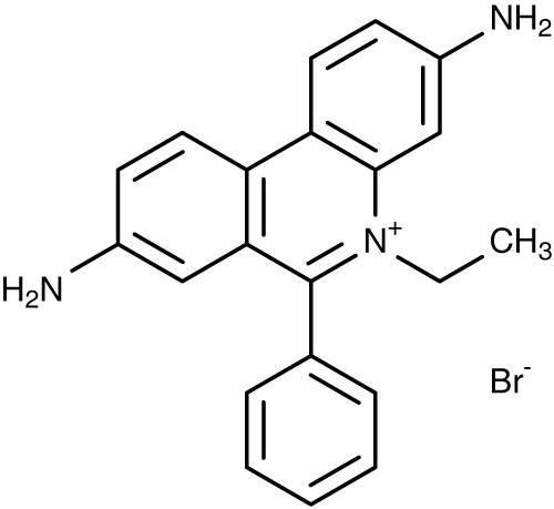 Ethidium Bromide at Best Price in Mumbai, Maharashtra