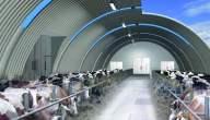 مشروع تصميم معمارى مزرعة مواشي