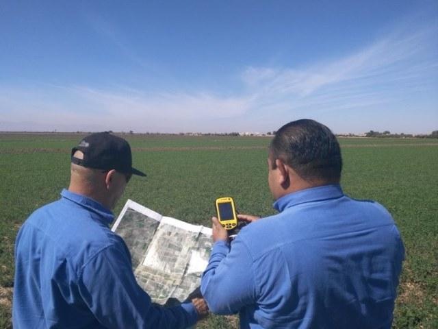 mas-de-169-mil-hectareas-cultivadas-en-el-valle-de-mexicali