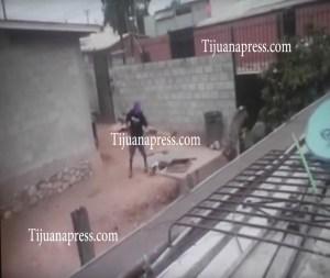 acusado de maitratar perro detenido2