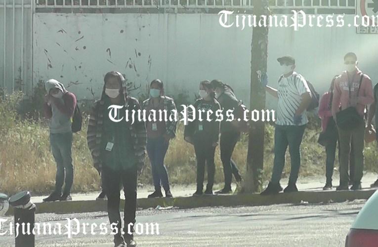 Gobierno federal registra 780 muertes en Tijuana