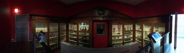 Universiteitsmuseum Utrecht - Bleulandkabinet (2)