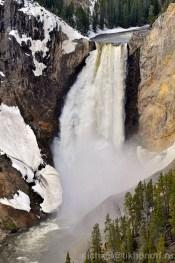 Yellowstone Lower Falls Canyon Village area