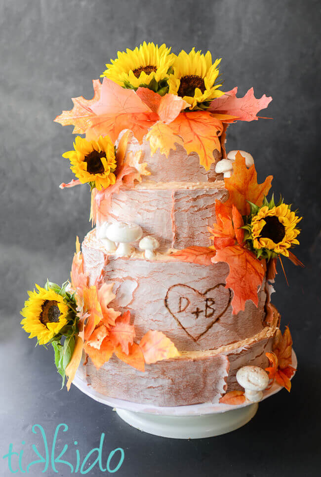 Rustic Fall Wedding Cake  Tikkidocom