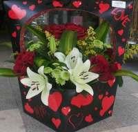 أزهار ايريس    طرطوس