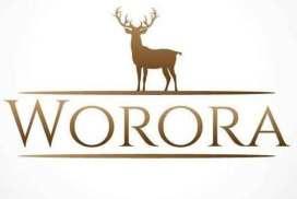 أحذية Worora   حمص