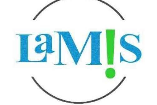 شركة لميس للصناعات الكيميائية  دمشق