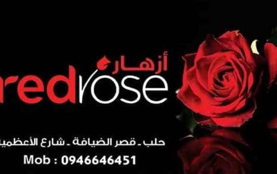 Red rose للأزهار  حلب
