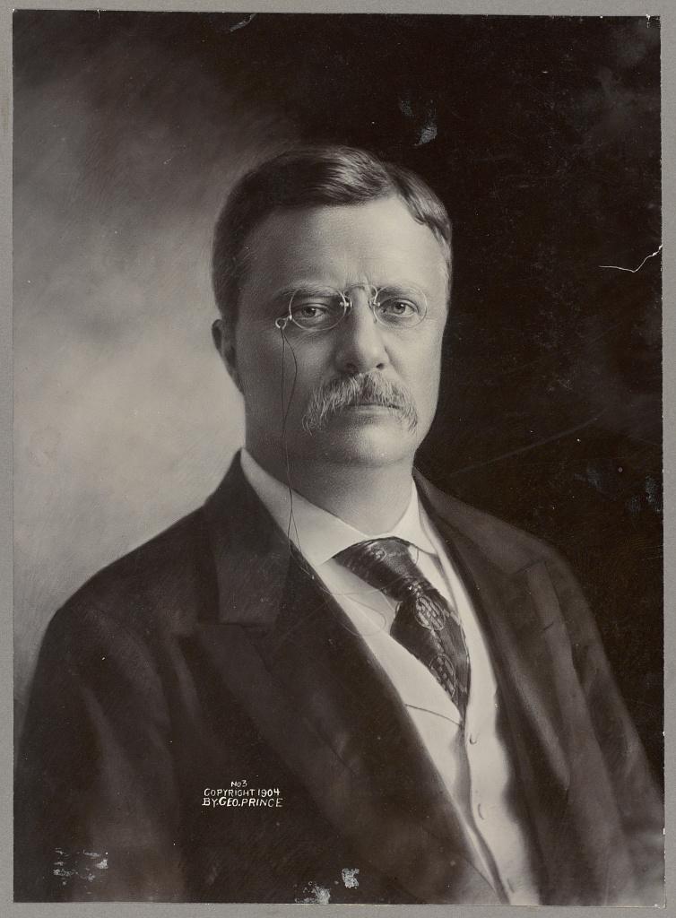 Teddy Roosevelt Portrait : teddy, roosevelt, portrait, Theodore, Roosevelt, Portrait,, Facing, Front], Library, Congress