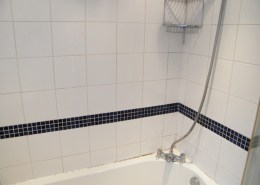 Bathroom Tile Cleaning Services Tile Stone Medic - Bathroom steam cleaning service